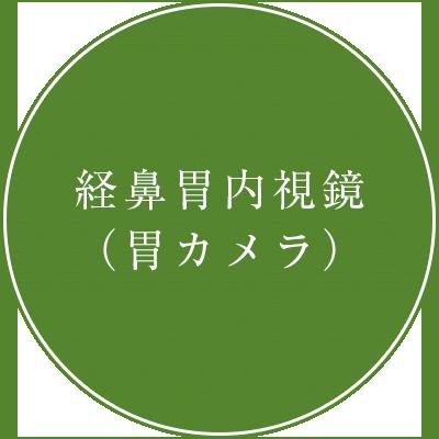 経鼻胃内視鏡(胃カメラ)